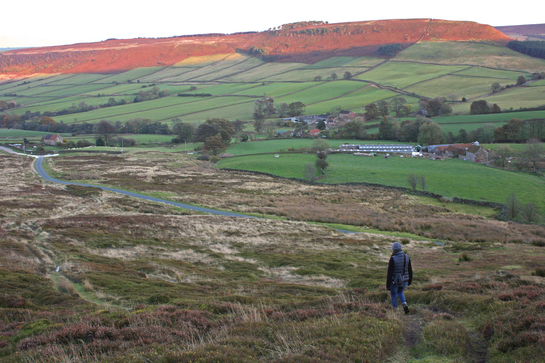 A woman admires the views across Danby High Moor, in the North York Moors National Park in North Yorkshire
