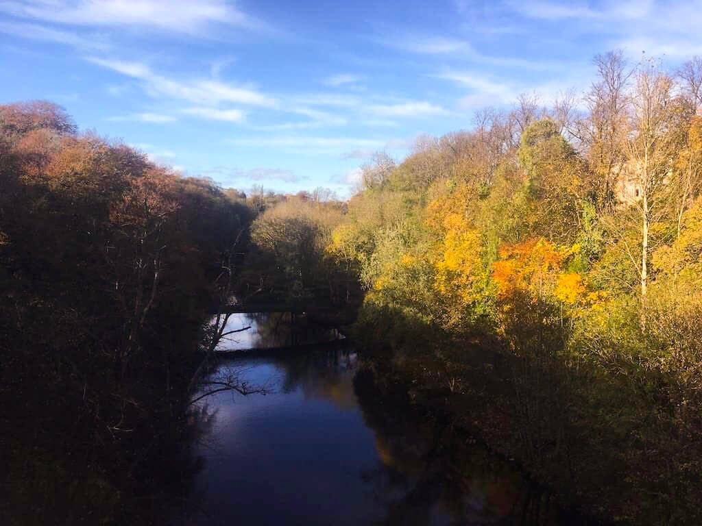 leaf peeping glasgow